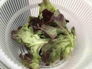 Recette-salade-au-jambonneau